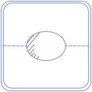Oval_Shape
